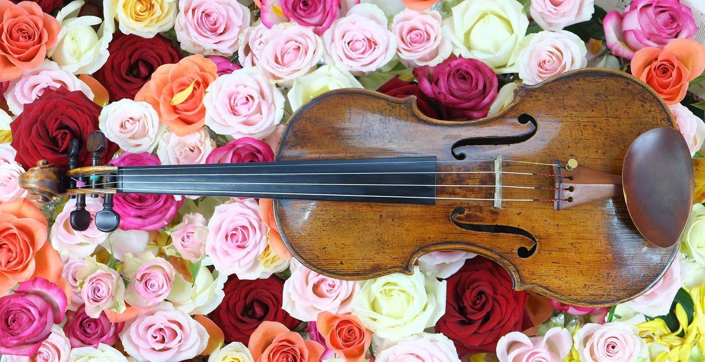 Friday Love | Lindsey Stirling & her violin