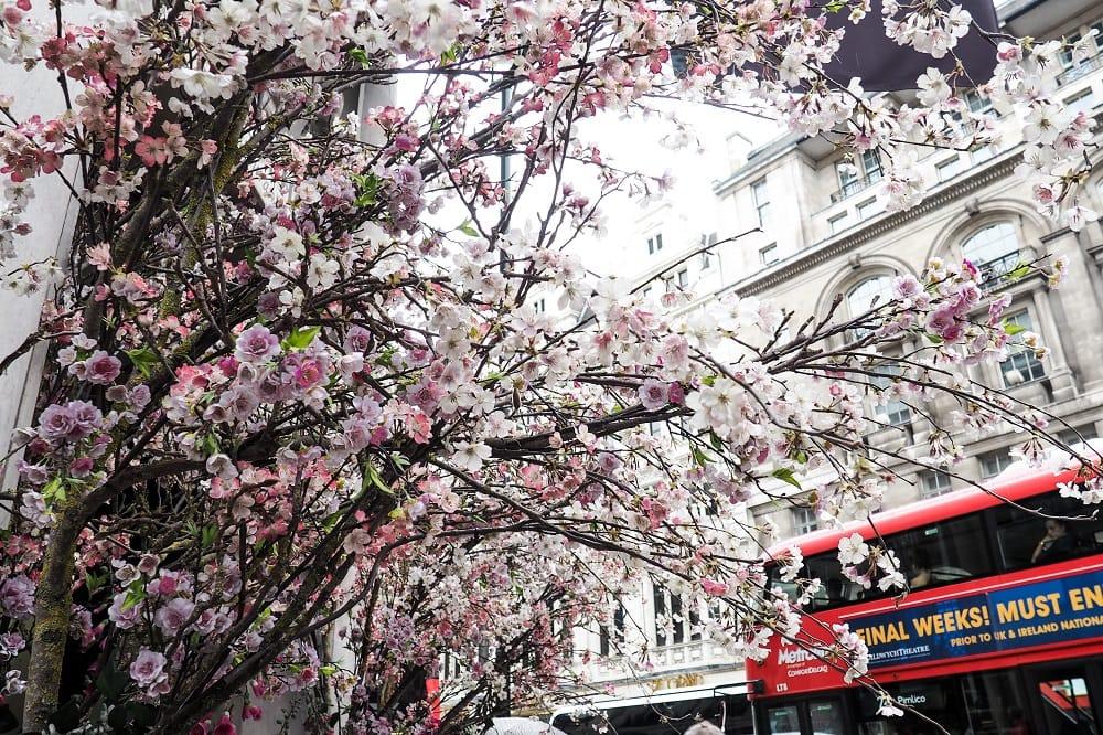 Weekly London | Diary #1